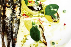 Olivieri sardine